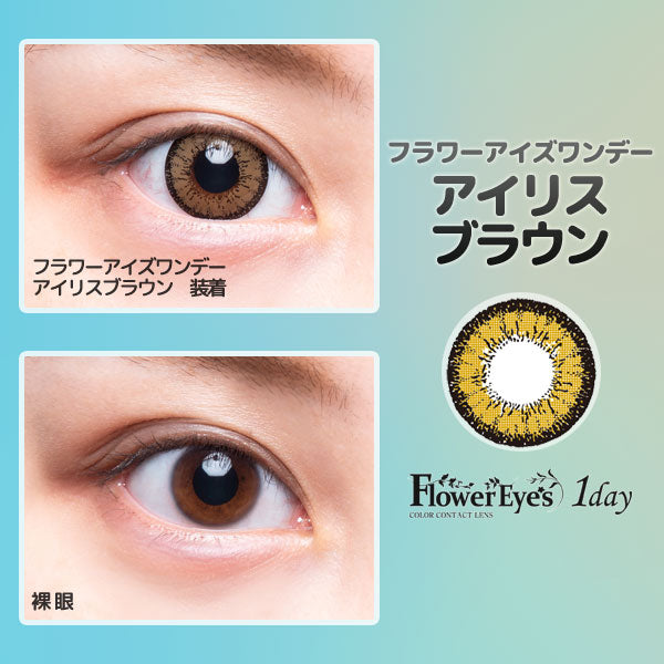 FlowerEyes 1day浅棕色IrisBrown日抛10片装