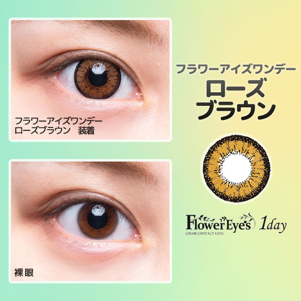 FlowerEyes 1day棕色RoseBrown日抛10片装