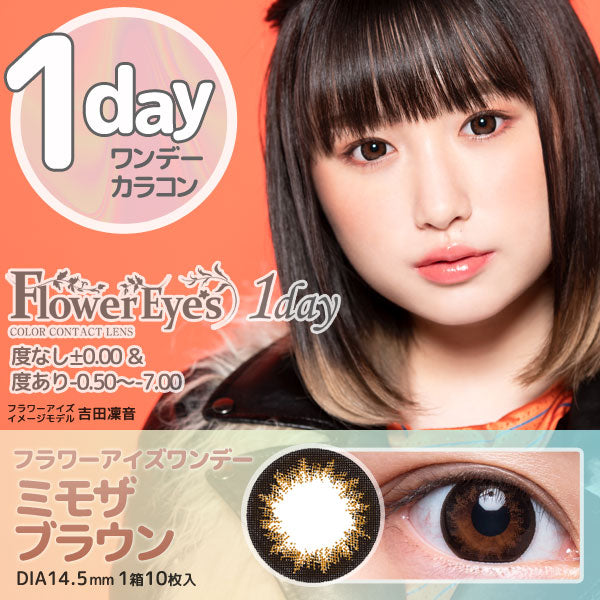 FlowerEyes 1day棕色MimosaBrown日抛10片装