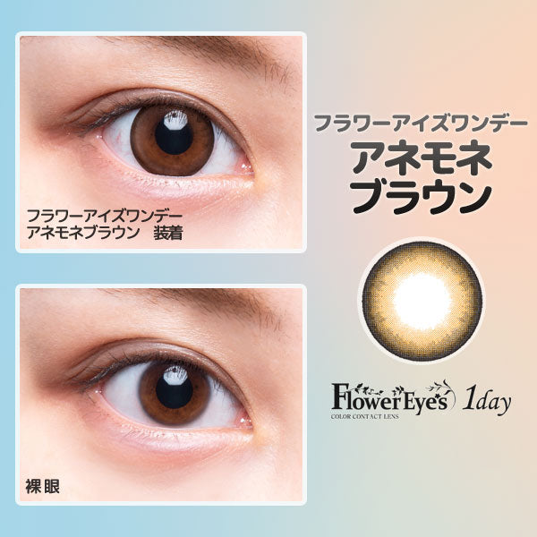 FlowerEyes 1day棕色AnemoneBrown日抛10片装