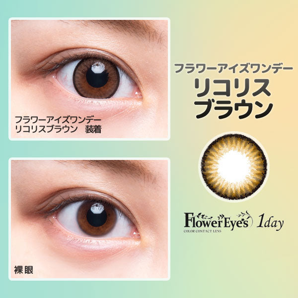 FlowerEyes 1day棕色LycorisBrown日抛10片装