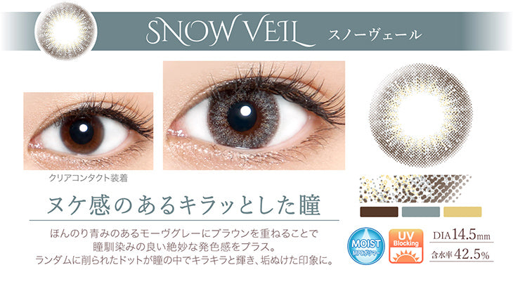 EverColor1day浅灰色 SnowVeil日抛10片装