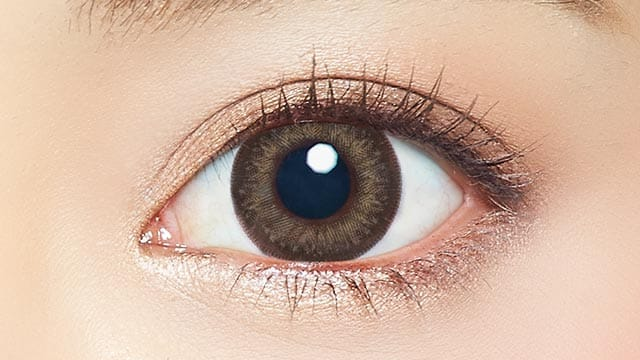EYE GENIC by evercolor monthly月抛---natural series honey skin