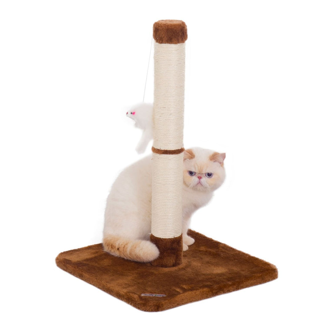 Cat Scratching Post with Toy - Brown