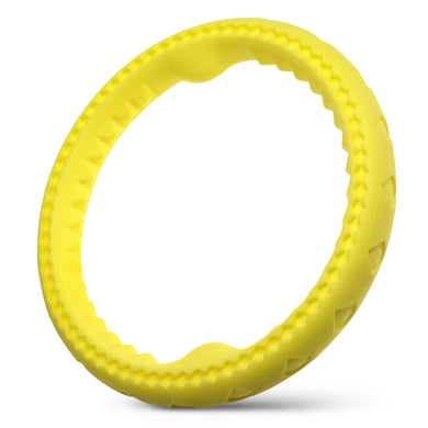 Pool Floatable Frisbee Toy - Banana Scented