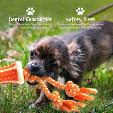 Combo Dental Bone with Tug Ropes Toy