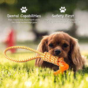 Mini Dental Bone With Tug Ropes Toy