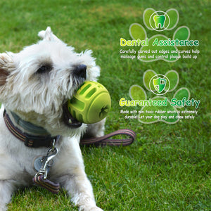 Tough Treat Handle Ball - Green