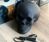 Chalkboard Skull Piggy Bank/Money Bank - clean