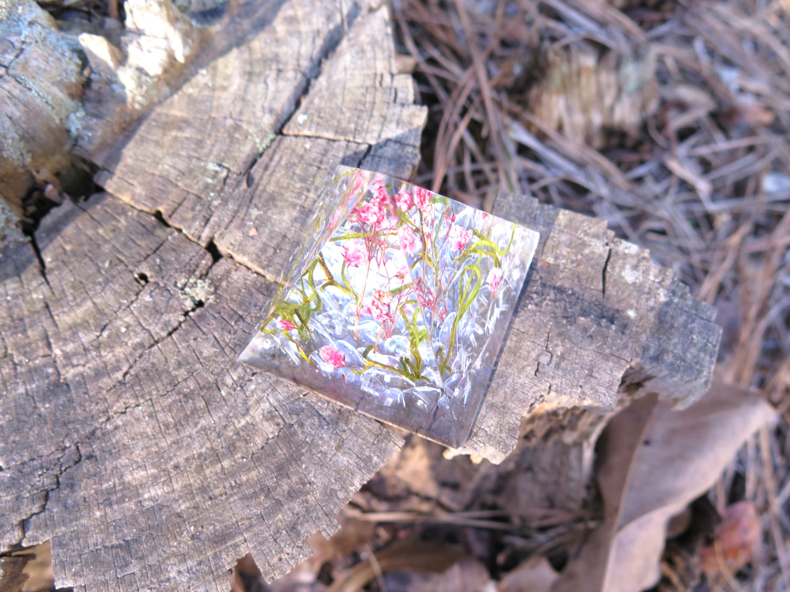 Real flowers arrangement house decor, Paperweight Resin pyramid