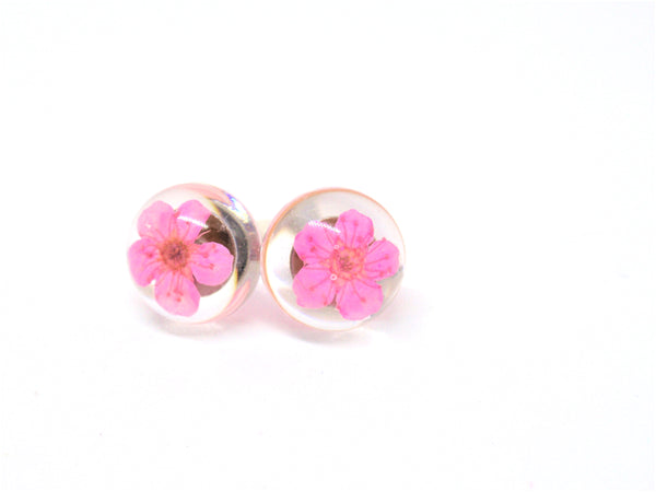 Wild flower stud earrings, Real flower earrings