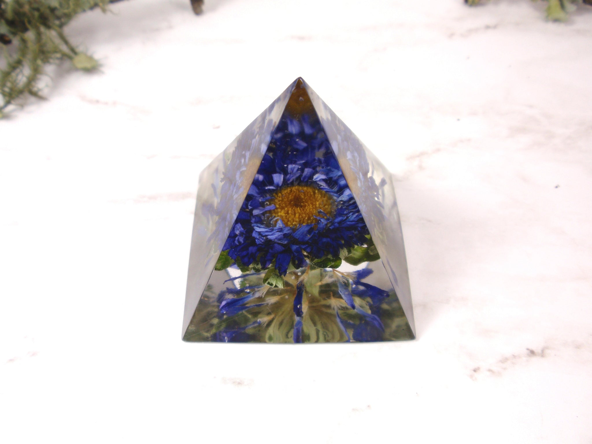 Blue Mum flower paperweinght desk decor real flower home decor pyramid