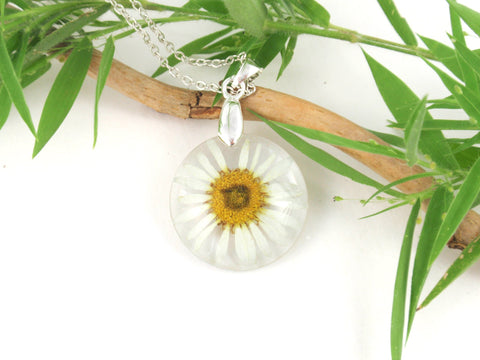 Real Daisy resin Necklace, Birth Month flower April