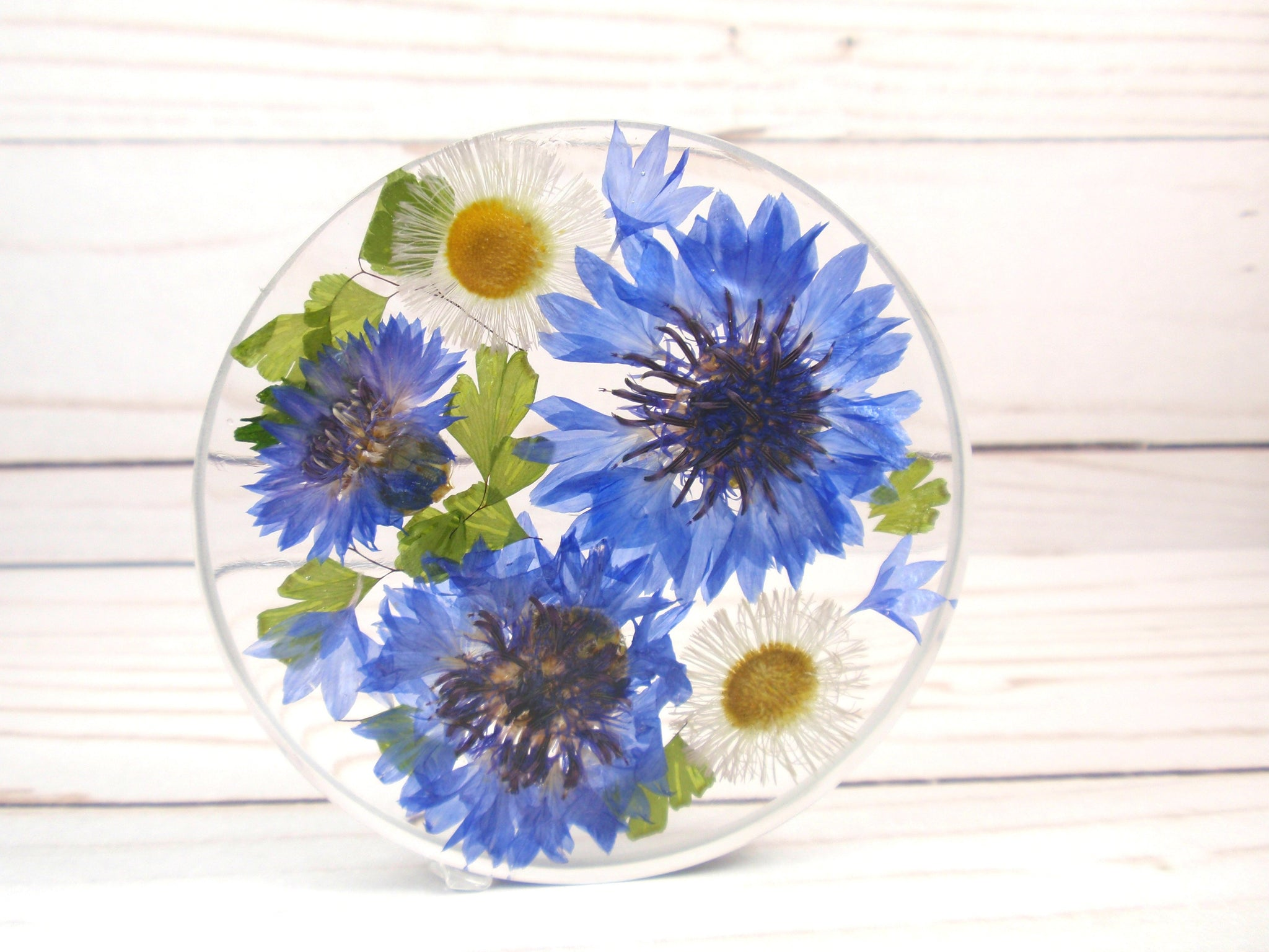Home decor Real flower resin coaster