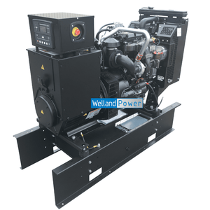 Welland Power WP60, 60kVA Open Diesel Generator powered by Perkins 1103A-33TG2 diesel engine
