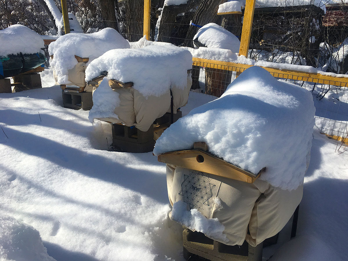 Winterizing Your Hive Beehive Cozy Cover