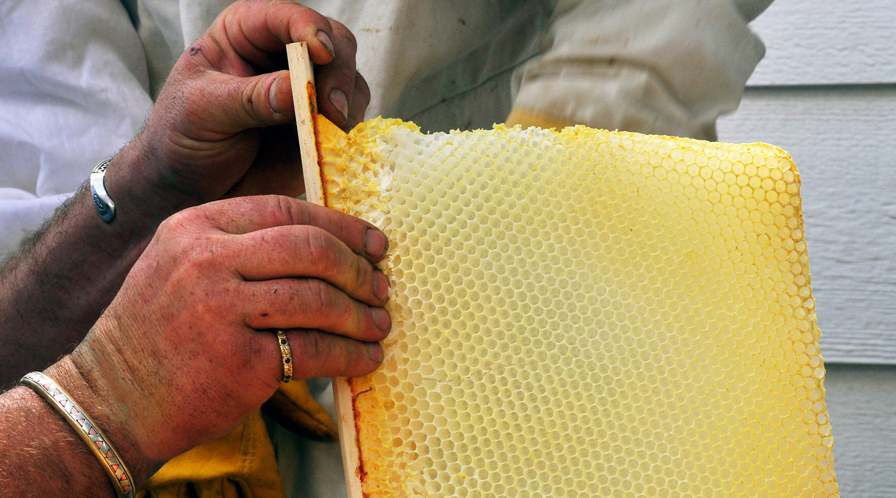 fixing-crooked-bee-hive-comb