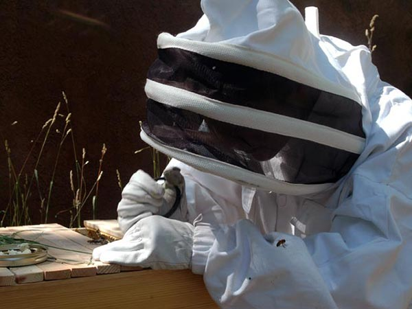 Beekeeping-Protective-Gear-old-suit-hood