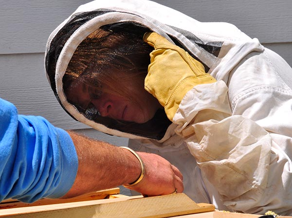 Beekeeping-Protective-Gear-old-suit