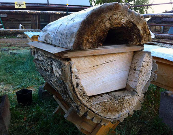 Brooks-Log-Top-Bar-hive