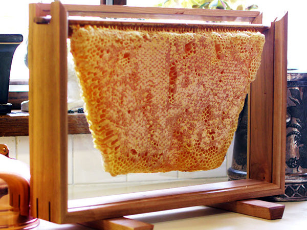 Glass Honey Comb Display Frame