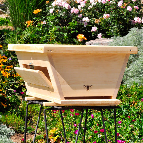 Golden Mean Top Bar Bee Hive