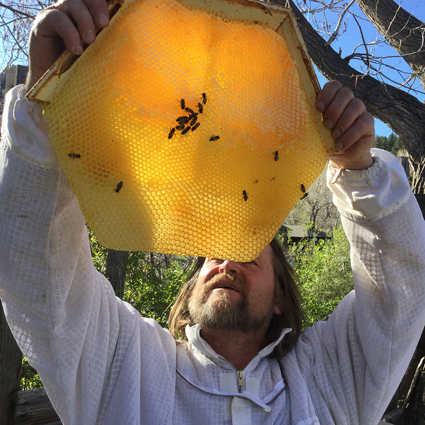 Corwin holding a Cathedral Hive hexagonal honey comb