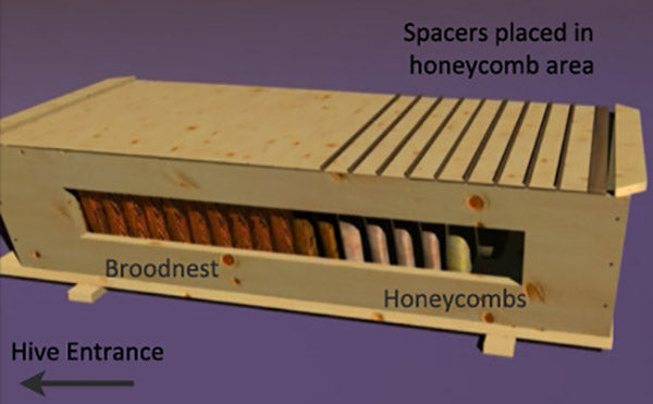 spacers placed in the honeycomb area of the hive