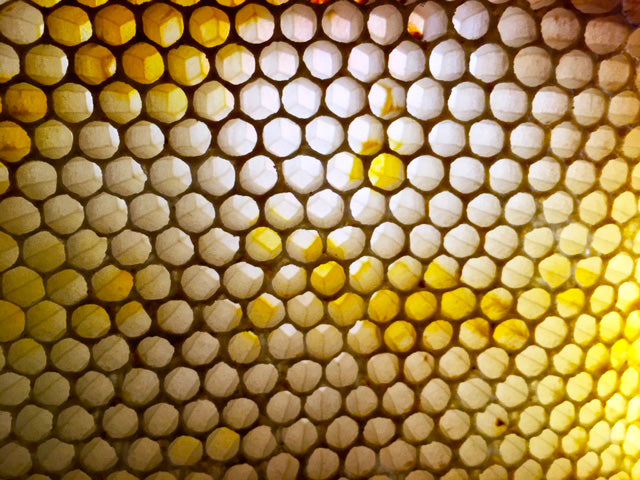 honeycomb-cells