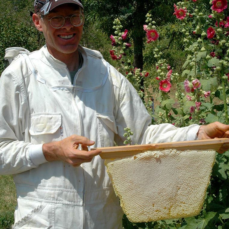 Bee Guardian Kevin holding up a fully capped Golden Mean honey comb weighing 7 pounds!