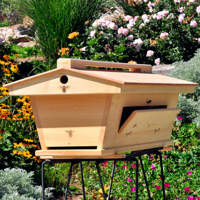 BackYardHive Original Top Bar Hive ventilated roof
