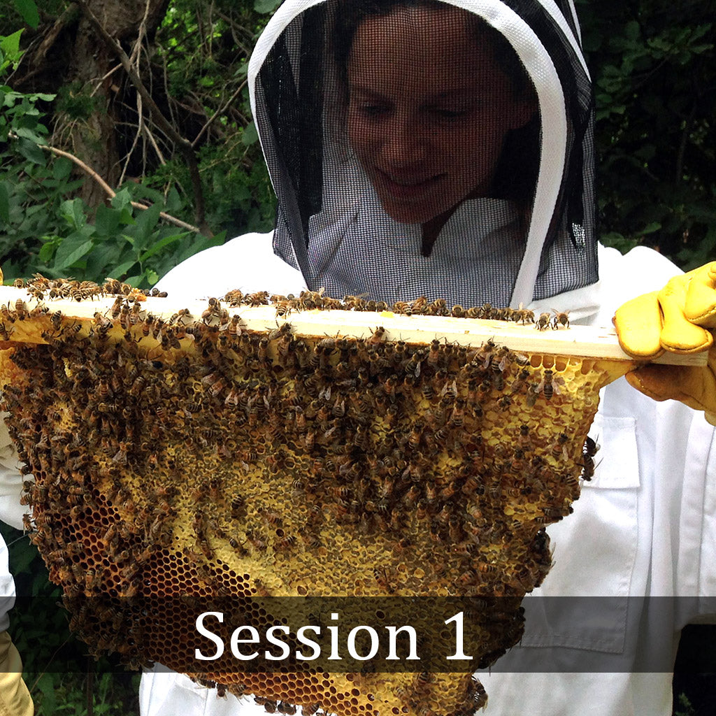 Natural Beekeeping Classes Corwin Bell - Colorado