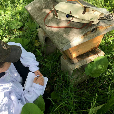 Beekeeping Journal for Hive Tool Quiver