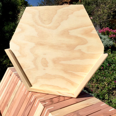 Cathedral Hive Wooden Flaseback hexagonal