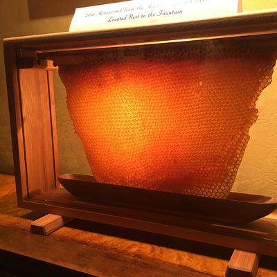 "Glass Honeycomb Display - Golden Mean Hive or EU National  17-18"" bars"