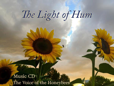 The Light of Hum - CD - The Noice of the Honeybees