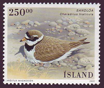IC09531 Iceland        Scott # 953 MNH         (Birds / Oiseaux)