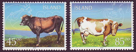 IC0986-871 Iceland       Scott # 986-87 MNH, Icelandic Cattle 2003