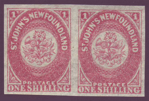 NF023x21PE Newfoundland       # 23 pair rose VF MNH**            1861 - third pence issue