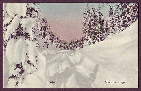 NO6010 Norway Vinter i Norge #1.  ca.1920