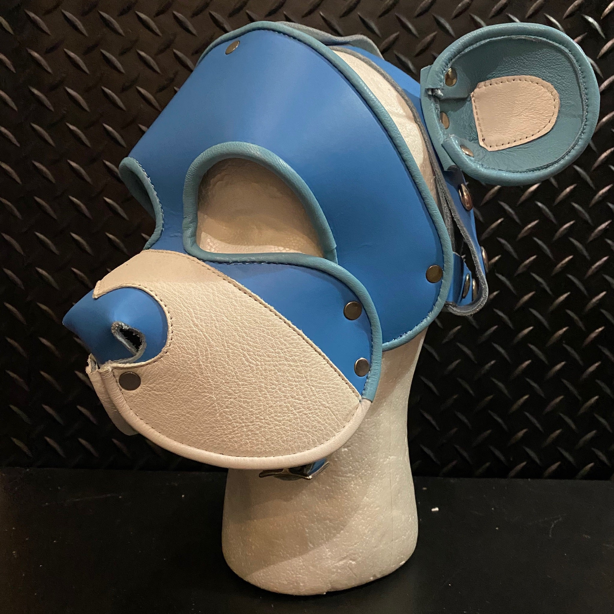 P&C CREATIONS PUP HOOD-CARE BEAR BLUE