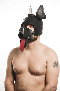 Soft Leather Puppy Hood