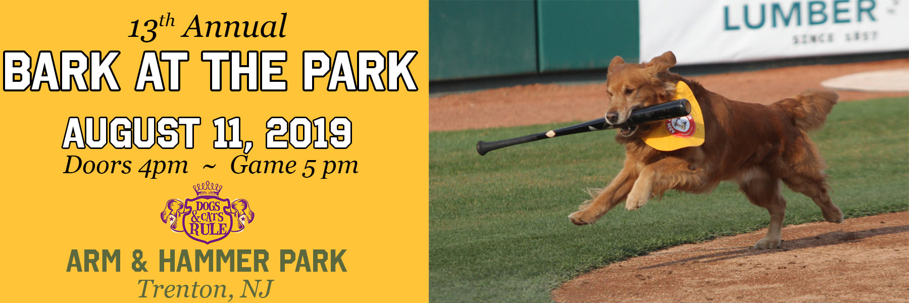 Bark in the park event