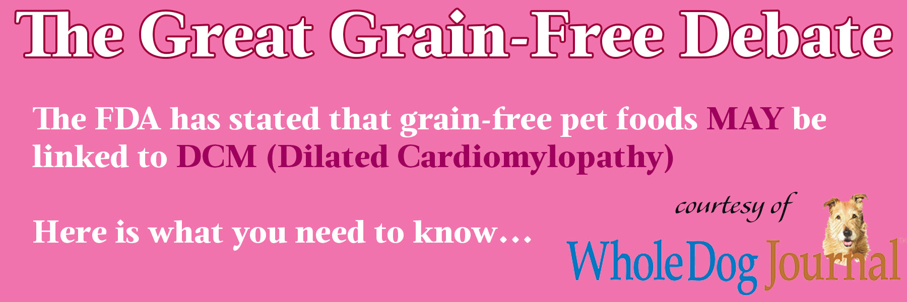 Dilated Cardiomylopathy information banner