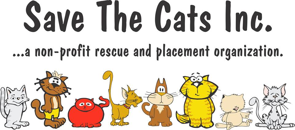 Save the Cats Adoptions