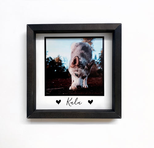 Framed Custom Pet Photo