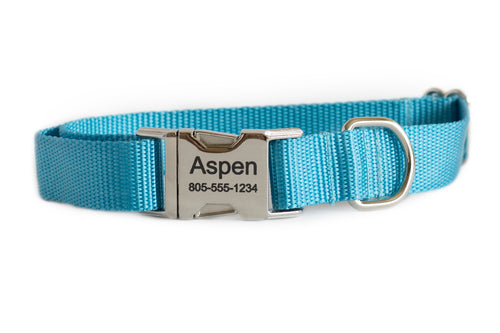 Light Blue Nylon Dog Collar