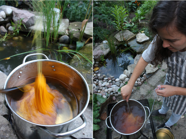 Dyeing Yarn with Marigolds