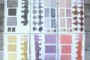 Natural Dyeing and Botanical Printing Workshop- NEW DATES COMING SOON
