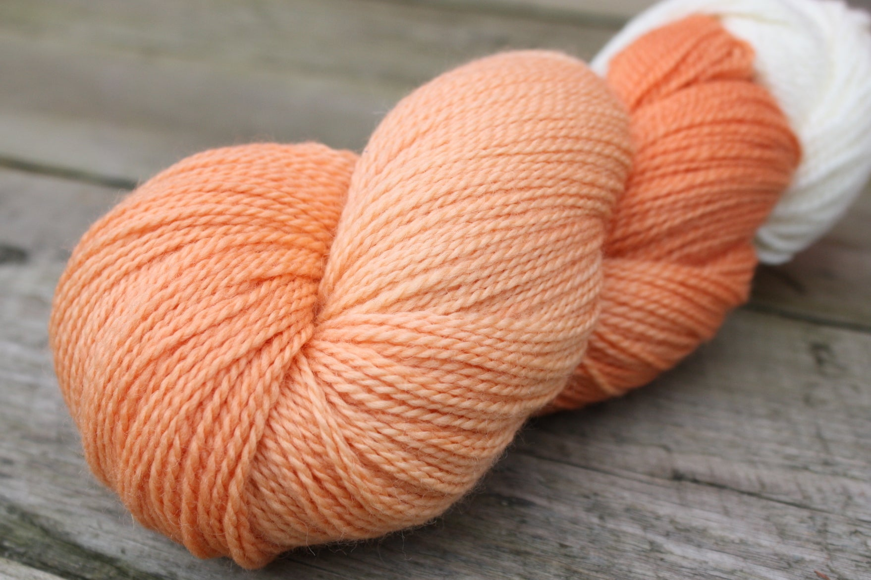 Creamsicle/ Woodland Merino Wool, Fingering